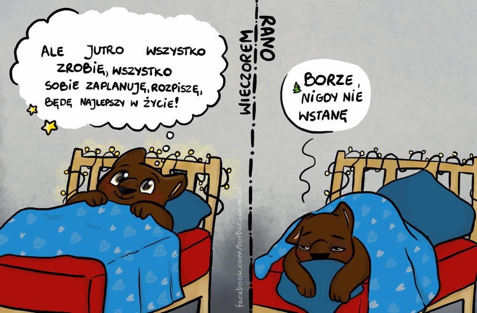 Torbacz Wombat - Rano